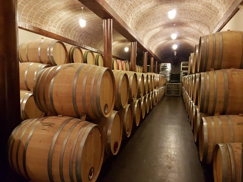 Butoaie vin – cum obtii vin de cea mai inalta calitate