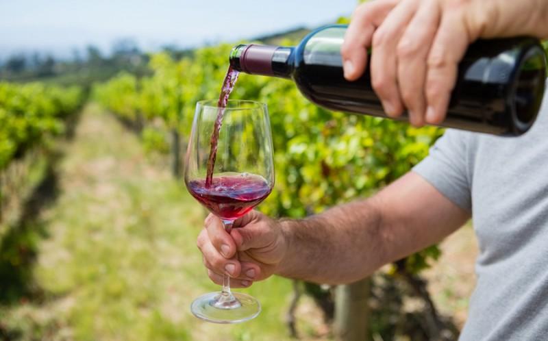 Tot ce trebuie sa stii despre vinul natural