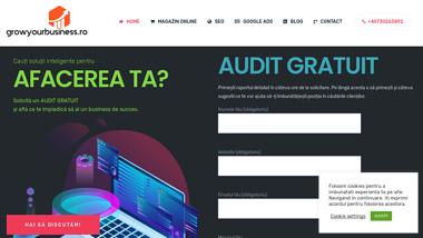 Agentie marketing online & web development - growyourbusiness.ro